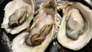 Oysters. Credit - cookingmamas.com