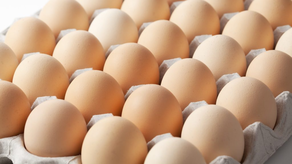FG Ready To Launch N10Billion Egg Production Scheme