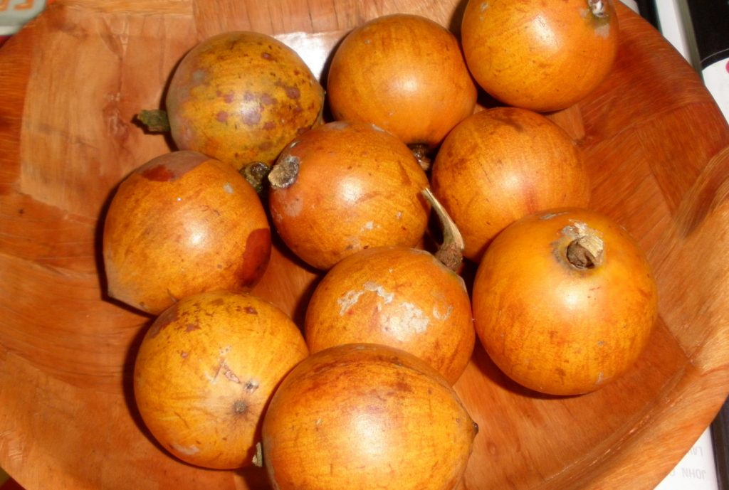 5 Reasons You Must Join The Agbalumo Train