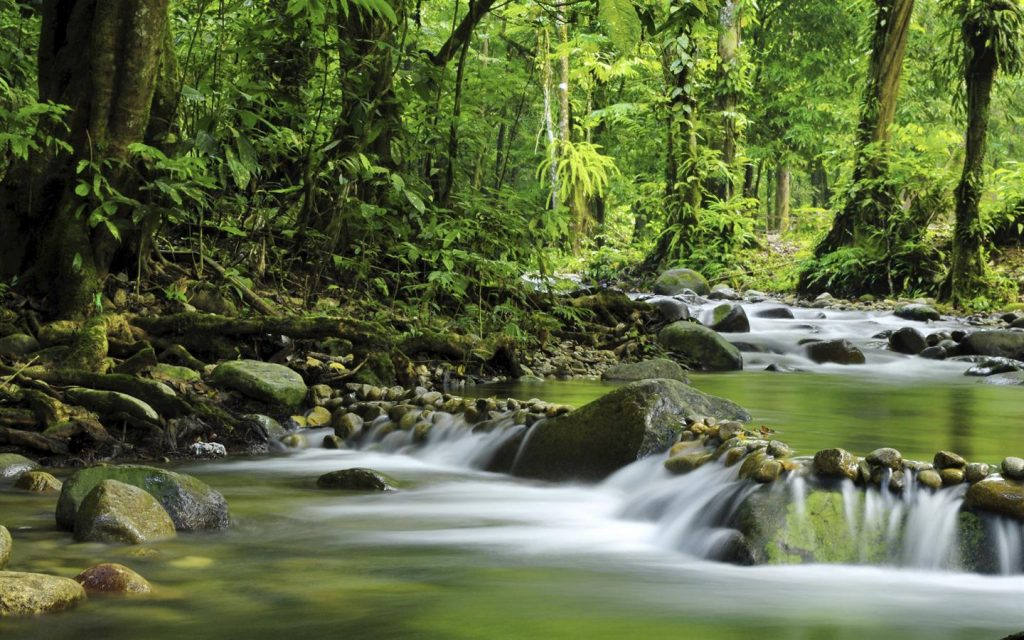 World Environment Day: The Worsening Environment Situation In Nigeria